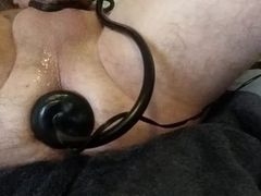 Nicely stretched arsehole with tokus plug cumming on aggravation